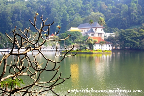 Widok na Świątynię Zęba i jezioro.