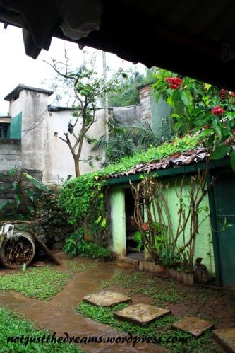 Ogródek Pink House. Wbrew zieleni domek od zewnątrz jest ... różowy. W ogródku stół, przy którym niemal przez cały dzień można spotkać przebywających tam podróżników. A po domu kręci się rodzina, która w domku mieszka, domkiem zarządza, a jak trzeba to i gdzieś tuk-tukiem podwiezie.