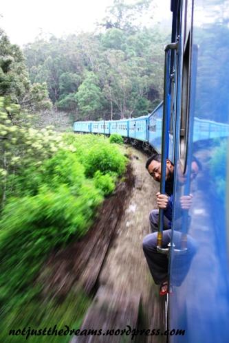 A oto pociągowy wyjec. Wyjec, wraz ze swoimi znajomymi, szczególnie uaktywniał się w ciemnych tunelach, w których szczególnie chętnie wył. Może do księżyca? ;)