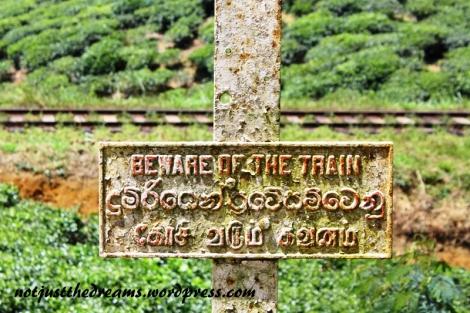 I zakaz, którego nikt tu nie przestrzega. A właściwie nawet nie zakaz a ostrzeżenie, przed pociągami. Tylko jak tu uważać ciągle chodząc po torach?