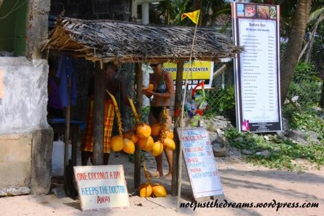 Przylądek raju czyli sklepik z kokosami, a przy nim informacja, że jeden kokos dziennie uchroni nas przed lekarzami. Żeby zaoszczędzić 20 rupii wystarczyło też przejść przez hotel i kupić doskonałe kokosy tuż przy ulicy. Ale nawet plażowe 50 rupii (1,25zł) nie było majątkiem.