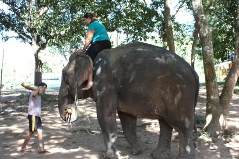 W Laosie po raz kolejny trafiłam na szalonego słonia. Pierwszy był dwa lata temu w Tajlandii. Tym razem nasz słoń znowu urwał się ze szlaku, przy okazji powalając trzy drzewa i kilka innych bezskutecznie próbując. Latały kłody, latały gałęzie, a mahout (słoniowy opiekun) strzelił na swojego podopiecznego focha i najspokojniej w świecie sobie odszedł. Na szczęście jeszcze wtedy nie siedzieliśmy na samym grzbiecie...