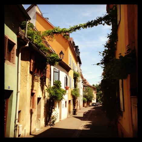 Colmar we Francji to idealne miasto na jednodniową wycieczkę.